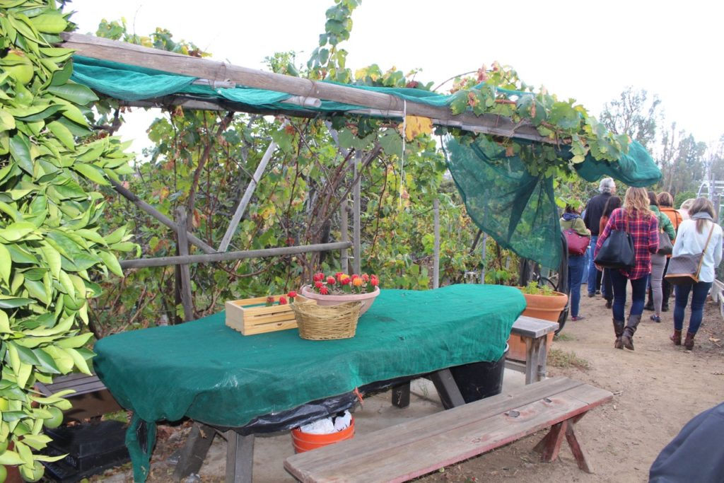 Bobby Flay Outdoor Kitchen A Memorable Farm To Table Meal By Outstanding In The Field