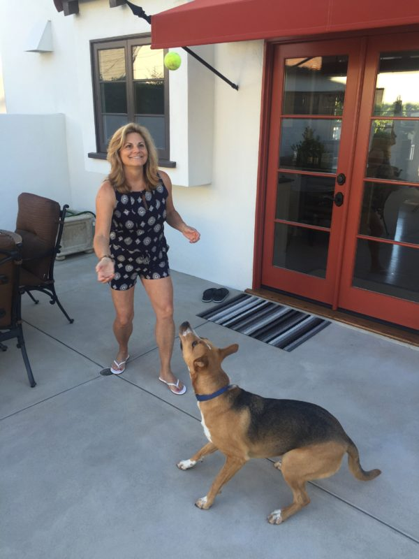 empty nesters love their dogs