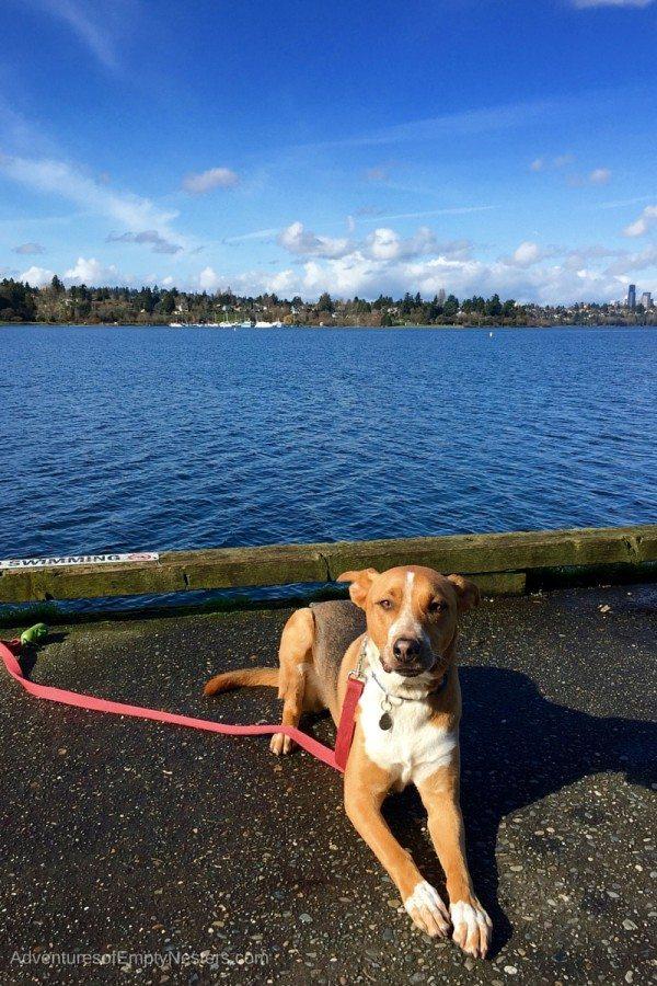 Seattle Seward Park