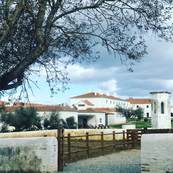 in the Portuguese countryside