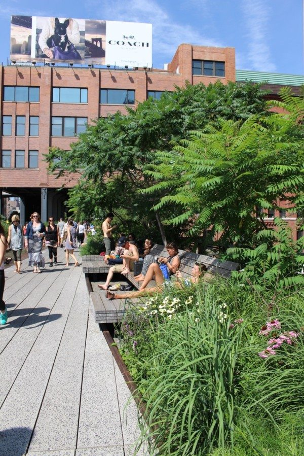Relax on the lounge chairs at the High Line