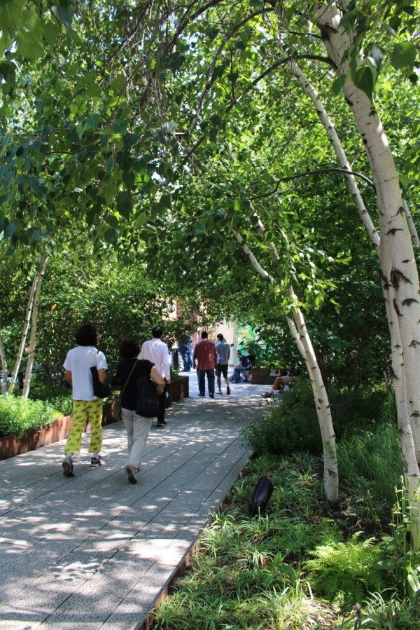 A visit along the High Line