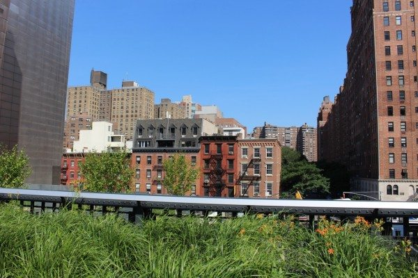 A view of NYC from The High Line