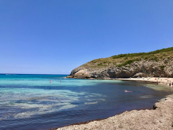 day trips in Mallorca
