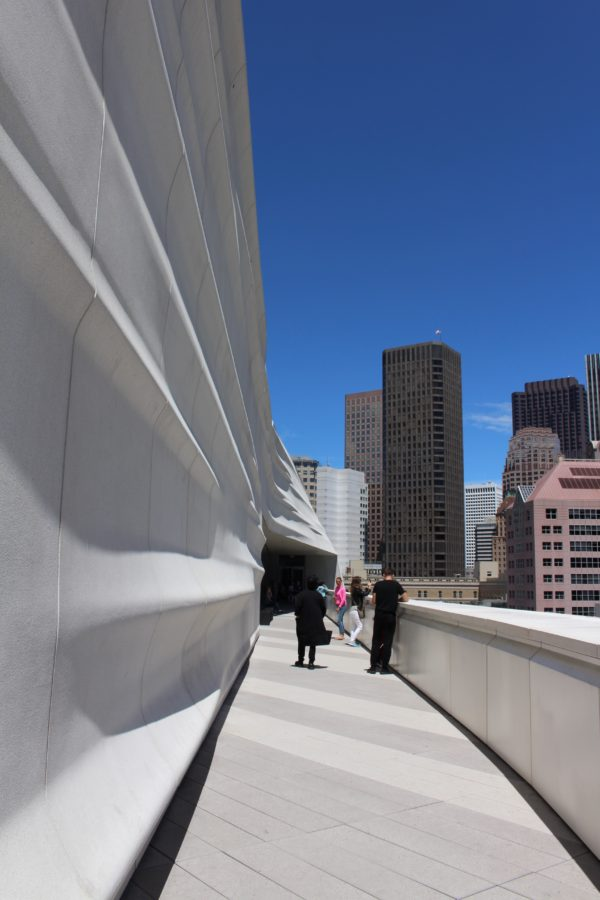 a visit to SFMoMA