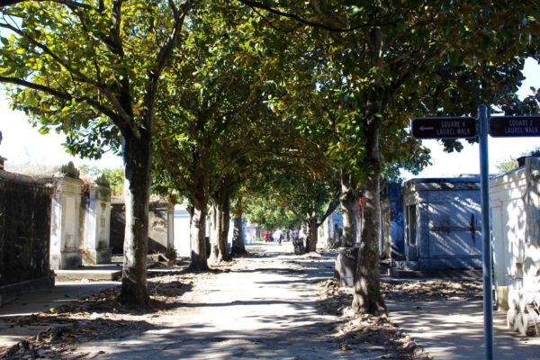 A view in to the Lafayette Cemetery