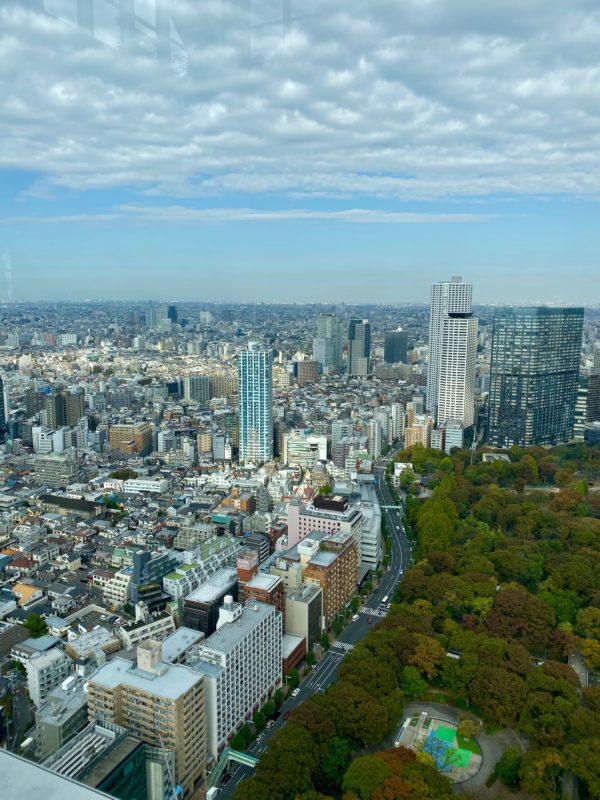 stay at Park Hyatt Tokyo
