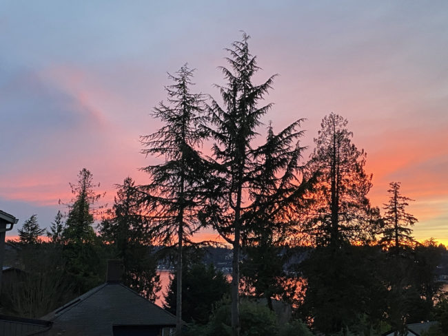sunset in the Pacific Northwest